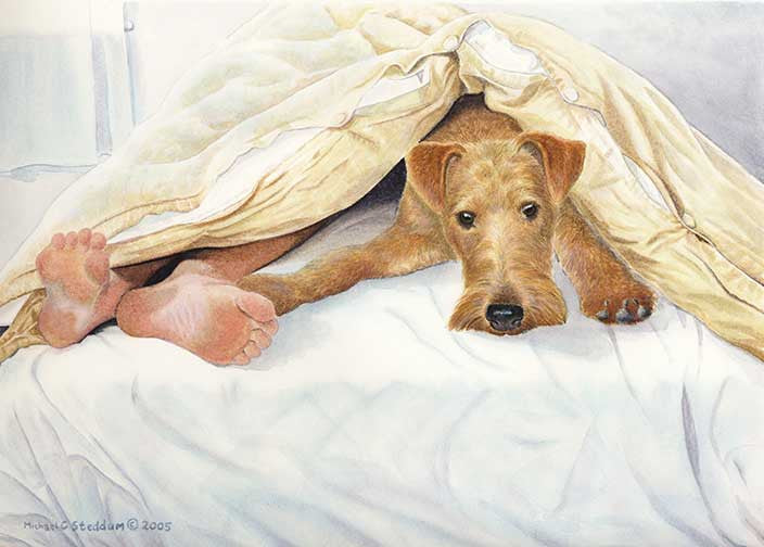 """Irish Terrier Feet"" A Limited Edition Print"