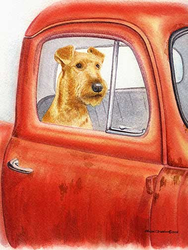 """Sunday Drive"" A Limited Edition Irish Terrier Print"