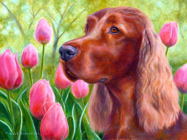 """Irish Bouquet"" A Limited Edition Irish Setter Print"