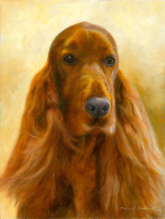 """Marvelous"" Irish Setter Limited Edition Print"