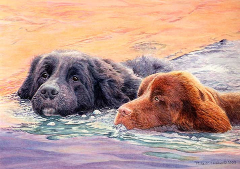 """The Rescuers"" A Limited Edition Newfoundland Print"