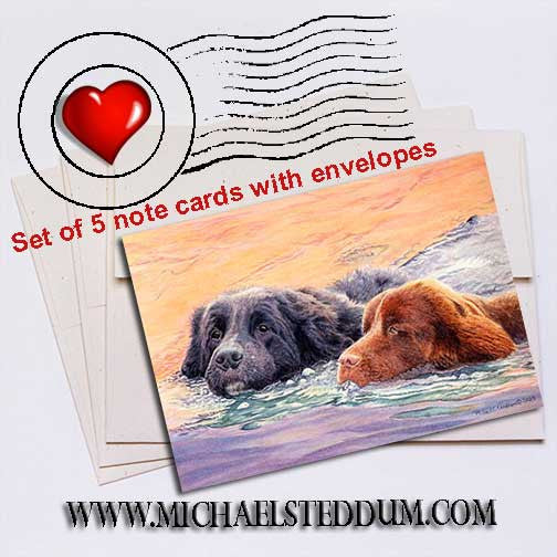 The Rescuers	Newfoundland Note Card Set