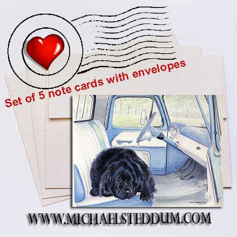 I Call Shotgun, Newfoundland Note Card Set