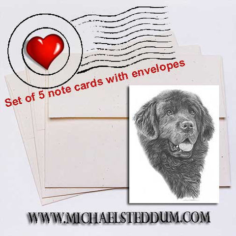 Newfoundland Pencil Note Card Set