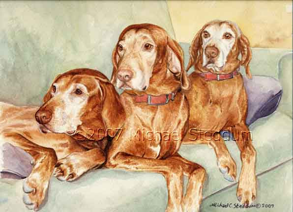 """Old Couch Potatoes"" Vizsla Print"