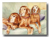 """Old Couch Potatoes"" Vizsla 11oz Coffee Mug"