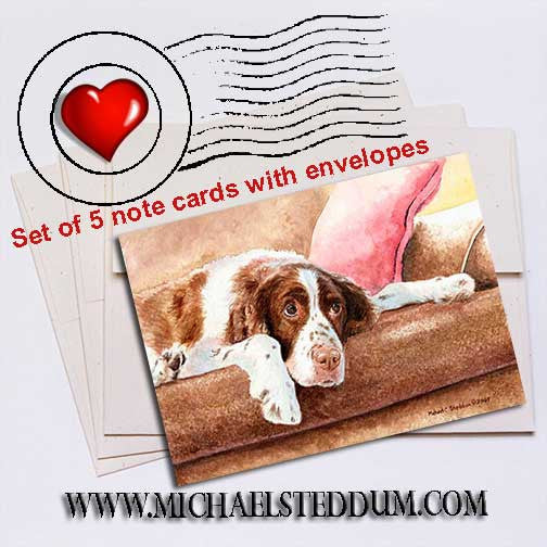 Springer Spaniel Note Card Set