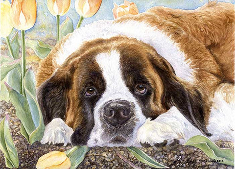 """Saint Tulips"" A Limited Edition Saint Bernard Print"