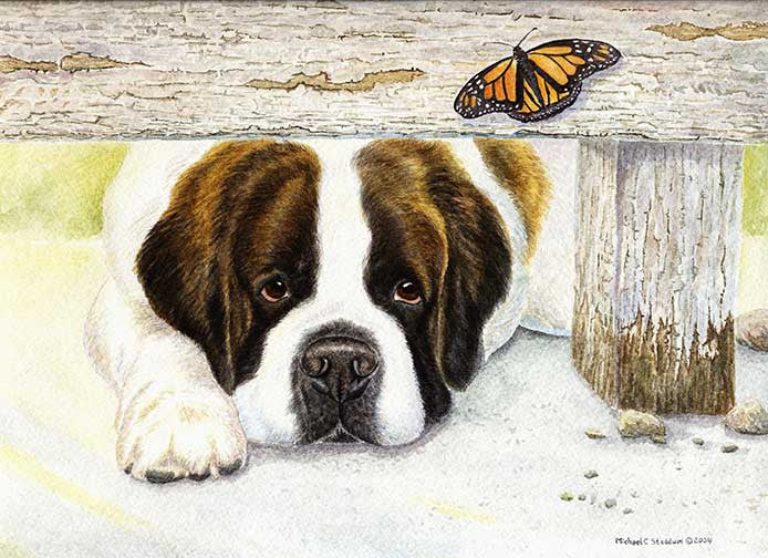 """Where is It?"" A Limited Edition Saint Bernard Print"