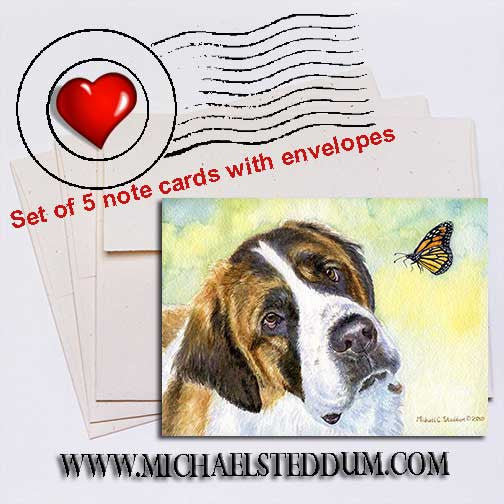 Saint Bernard Discovery, Note Card Set