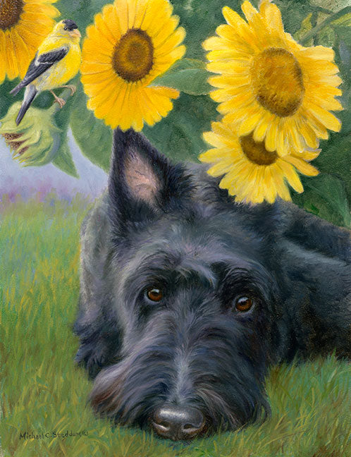 """Bird Droppings"" A Limited Edition Scottish Terrier Print"