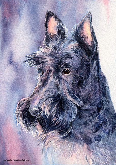 """Head Study II"" A Limited Edition Scottish Terrier Print"