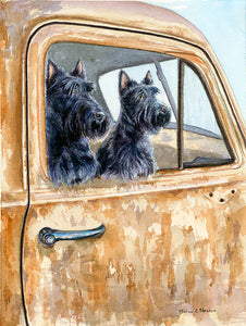 """Outing"" A Limited Edition Scottish Terrier Print"