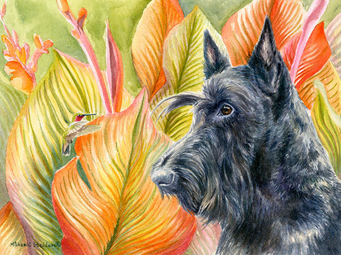 """The Visitor"" A Limited Edition Scottish Terrier Print"