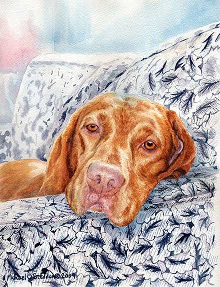 """Club Chair"" A Limited Edition Vizsla Print"