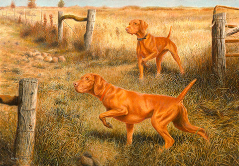 """Crossroads"" Limited Edition Vizsla Print"