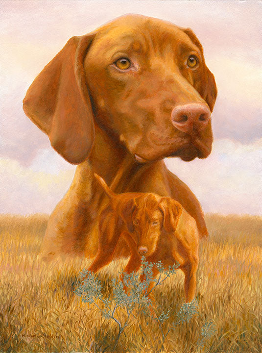 """The Good Life"" Limited Edition Vizsla Print"