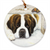 "Saint Bernard ""Where is it?"" Ornament"