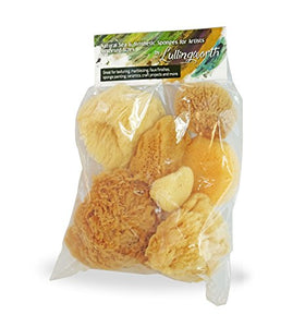 Natural Sea & Synthetic Sponges - Assorted Sizes 7pc