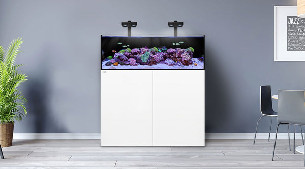 Waterbox FRAG 85.3