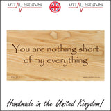 IN134 You Are Nothing Short Of My Everything Sign