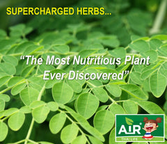 Super Herb Moringa Leaf from Air Thai Life.