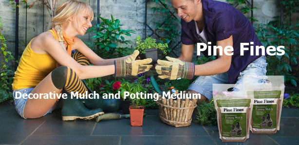 Terrace Mulch Pine Fines Potting Mulch