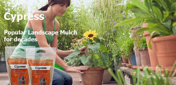 Terrace Mulch Cypress Potting Mulch