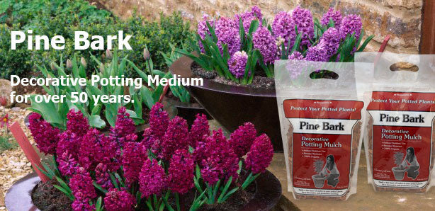 Terrace Mulch Pine Bark Potting Mulch