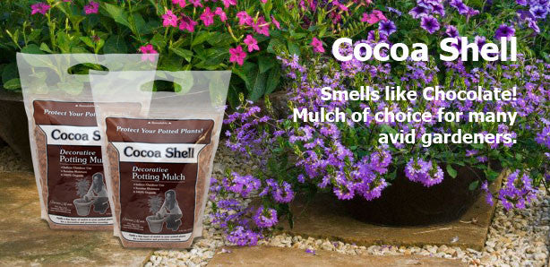 Terrace Mulch Cocoa Shell Potting Mulch