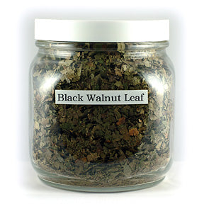 Black Walnut Leaf, Cert. Organic