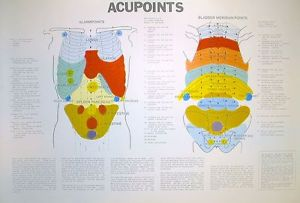 Acupoints Chart