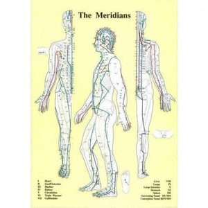 Meridians Chart