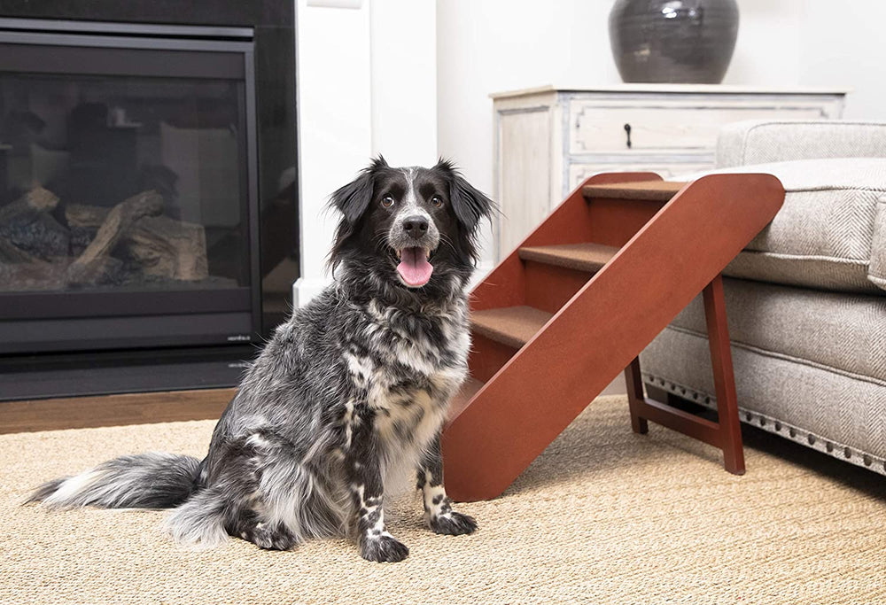 These Adorable Stairs Make it Easier for Doggos to Hop in Bed With You