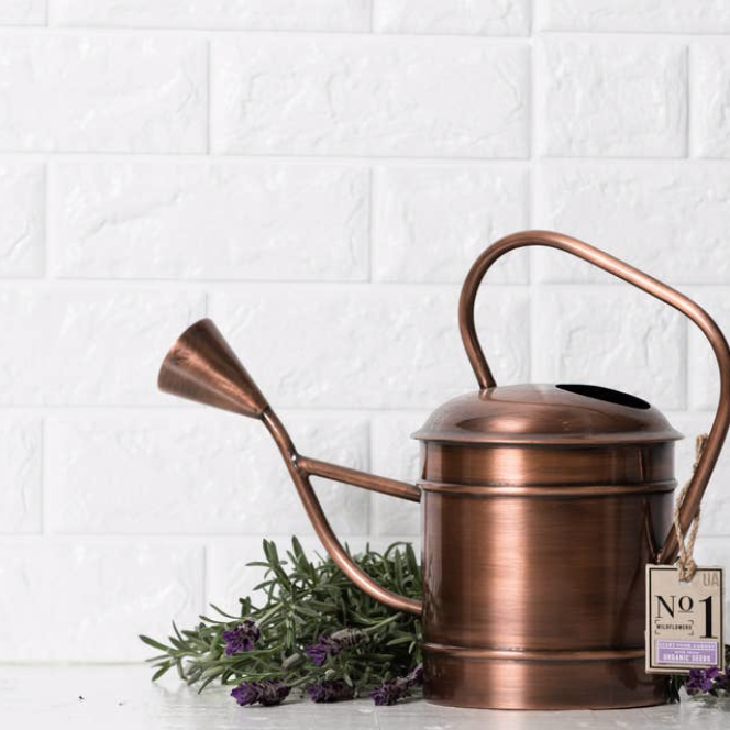 Large Outdoor Watering Can