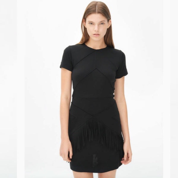 Sandro Ralene Fringe Dress