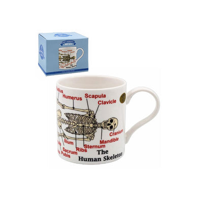 Human Skeleton Tea Coffee Educational Novelty Mug Gift Boxed Fine China - FREE UK Delivery - ClothesLabels.UK