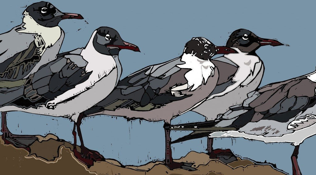 A Colony of Gulls - linocut by Jennie Cator