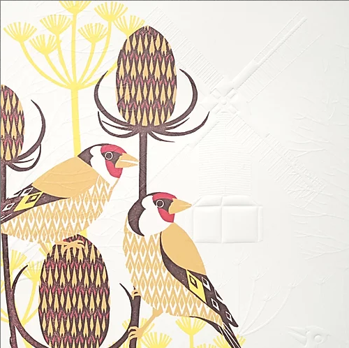 Gold Finches By Ashley Hutchinson