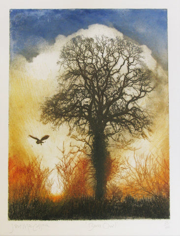 Barn Owl, Etching by Ian MacCulloch