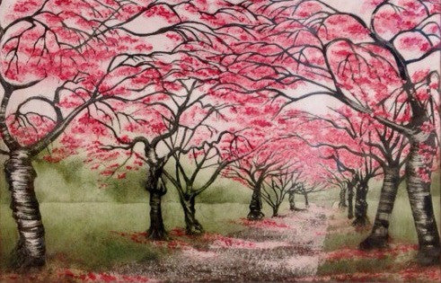 Cherry Blossom Walk by Morna Rhys
