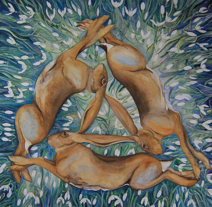 Jackie Morris Circle of Hares with Snowdrops