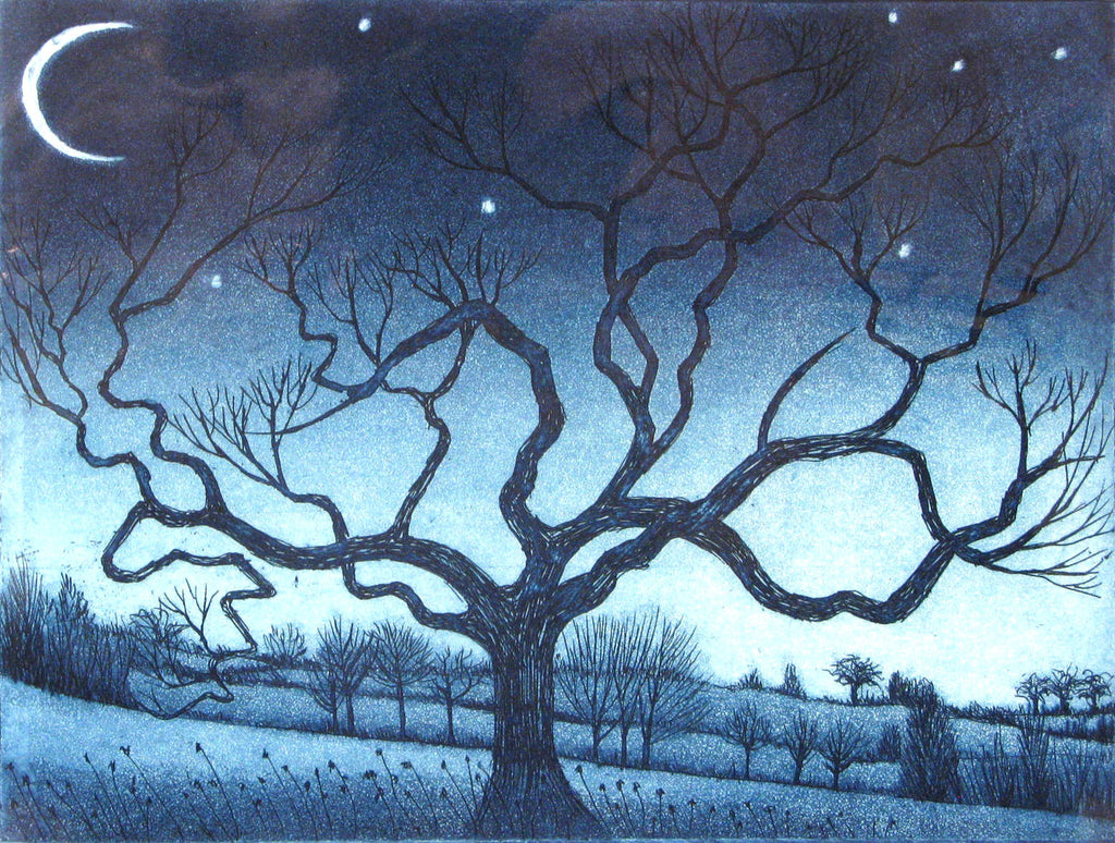 Crescent Moon, Morna Rhys