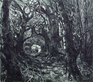Flora McLachlan In The Wood etching