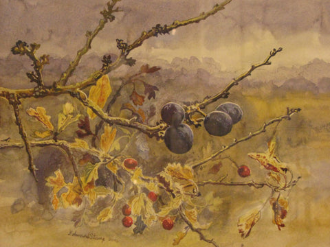 Sloes, Late Summer by Edward Stamp RI