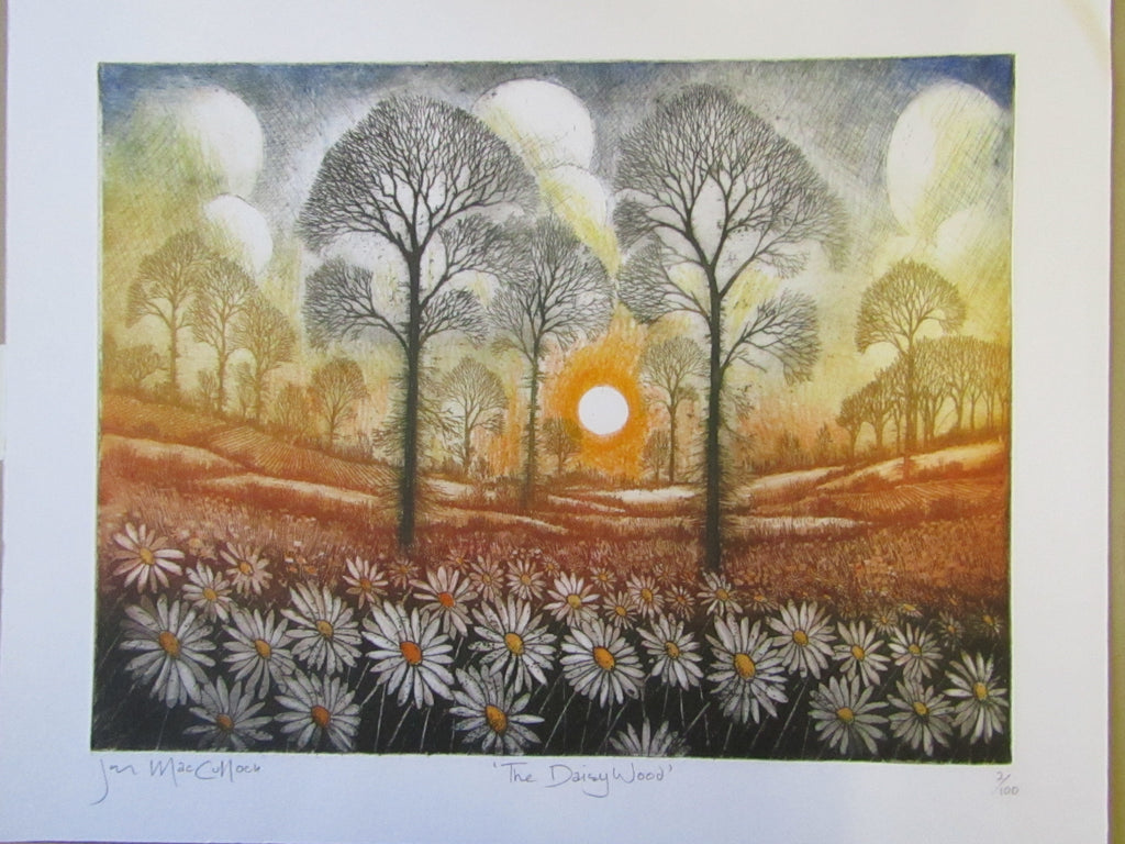 Daisy Wood Etching by Ian MacCulloch