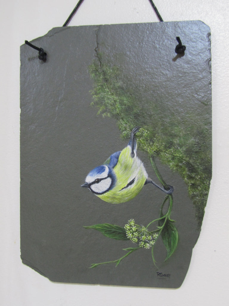 Original painting of Blue Tit on slate by Rosemary Timney