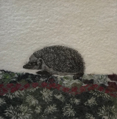 Hedgehog by Lindsey Tyson