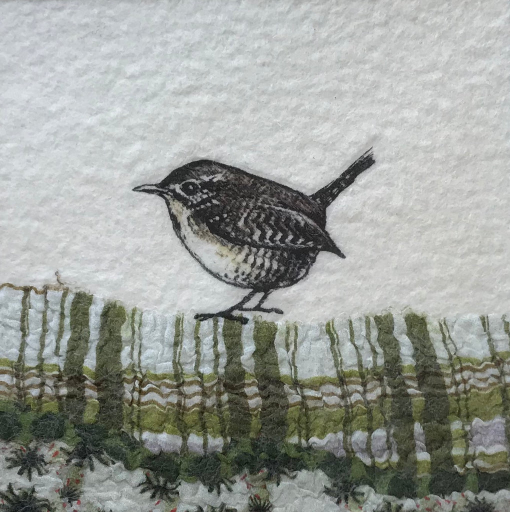 wren on green by lindsey tyson