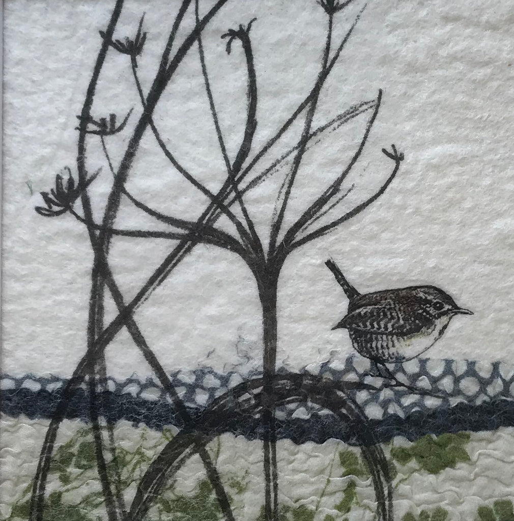 Wren & Cow Parsley by Lindsey Tyson